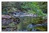 Laurel Falls (Steve4343) Tags: steve4343 nikon d70s laurel falls hampton tennessee elizabethton lakewatauga green yellow red orange water lake stream pond river creek