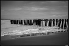 sangatte_la_descendrie_06 (Les photos de Laurent) Tags: laurent gaudinfazio nikon calais pasdecalais france nord north 35mm plage beach sable sand vague wave wind vent digue black noir blanc white sangatte descendrie