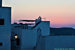 Colorful sunset (Sara Makboul) Tags: sunset twilight bluehour endoftheday moment colorful colours pastelcolors blueshades pink fuchsia evening summerafternoon outdoor nature beauty beautyofnature whitehouses whitecity ostuni apuliantown alley oldtown historiccenter panoramicview landscape suggestive foreshortening cozyplace puglia travel memories