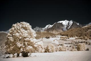 Mont Blanc Infrarouge
