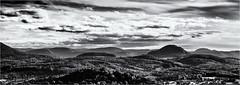 Where do you want to go... (Ody on the mount) Tags: achalm albtrauf anlässe berge em5ii fototour gipfel himmel licht omd olympus panores panorama rosberg schwäbischealb wald wolken bw monochrome sw