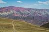 13.2 Salta Road Trip-4