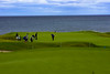 DSC07805 (srowell8) Tags: kingsbarns golf scotland st andrews