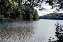 Solitaire Lake One (Bill Smith1) Tags: believeinfilm billsmithsphotography heyfsc kodakektar100 limberlostnaturepreserve muskoka olympusom2n zuikomc50f18lens