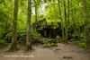 Keitel's Bunker, Wolf's Lair, Poland (Anna Calvert Photography) Tags: poland polska forest trees nature landscape wolf'slair hitlers lair nazi bunkers secondworldwar german gierloz ketrzyn keitel'sbunker