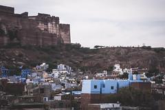 Rajasthan - Jodhpur - blue city