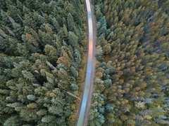 The Forest Express (Andrew G Robertson) Tags: canada train drone dji mavic british columbia long exposure forest tree