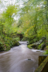 Slowbridge (GarethBell) Tags: llangefni dingle wales anglesey northwales windy stormy brian blurred longexposure motion river trees bridge water wet autumn leaves canon canon6d 35mm motionblur