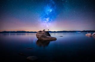 Bonsai Rock Composite Tahoe