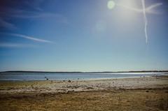 Lens Flare & Contrail (hiphopmilk) Tags: copyright©jaredyehwooehmoehfilms nikonfm2n nikonfm2 nikon fm2 35mm 135film film analog analogue kodak nikkor jaredyeh hiphopmilk sweden north europe scandinavia nordic gotland island visby town medieval landmark historic fårö faro islet gotlands beach sky blue sea sun sands ocean azure flare contrail