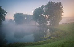 On silent haunches (Ingeborg Ruyken) Tags: dropbox morning zonsopkomst pond empel sunrise dawn ochtend mist wiel fog zomer 500pxs summer flickr natuurfotografie