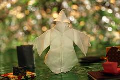 Wizard's Apprentice (Noburu Miyajima) (De Rode Olifant) Tags: marjansmeijsters origami paper paperfolding wizardsapprentice wizard halloween noburumiyajima diagram 3d origamiwizard