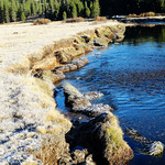 Frosty Morning, Tuolumne River, Yosemite 10-17 thumbnail