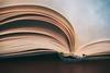 Reading Time (Janette Paltian) Tags: janettepaltian 650d canon reading buch book soft 100mm makro macro closeup tiefenschärfe schärfentiefe dof depthoffield blue blau yellow gelb pastell lesen seiten pages bokeh