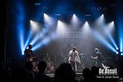 2017_10_27 Bosuil Battle of the tributebandsLIM_6429-Full Nelson  Limp Bizkit Tribute Johan Horst-WEB