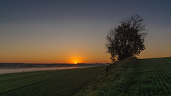 almost there (ralfkai41) Tags: sun dämmerung landscape landschaft sonne dawn sonnenaufgang feld outdoor sunrise natur nature