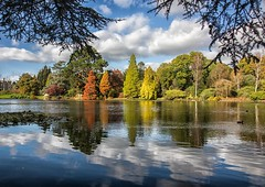 natural frame - Sheffield Park (sussexscorpio) Tags: iconic october sheffieldpark sussexscorpio reflections trees shrubs lake horticulture nature natural clouds sky frame colours colors colour color 2017 autumn autumnal landscape gardens water parkland woodland canon canon80d nationaltrust tree duck fall sussex haywardsheath east peacefall eastsussex