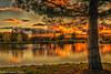 Orange sunset (martin.baskill) Tags: colorsinourworld sunset landscape lake lakeside water nature birds grass trees forest serene wood sky tree orange colourful autumn