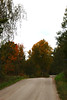 Road in autumn (linalundina) Tags: sweden sverige orebro örebro road path bumpy vågig wavy up down tree trees red yellow green colour colourful