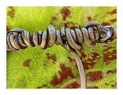 Weinranke am Eisendraht (christikren) Tags: weinranke vine october autumn nature herbst wineonawire macromondays spiral natur winetendril macro panasonic flickrfriday
