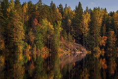 Halkolampi painted (tinamar789) Tags: forest autumn color colors colorful tree trees light leaves landscape pine birch yellow orange green pond rocks reflection luukki espoo finland peaceful