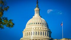 2017.10.28 DC People and Places, Washington, DC USA 9870