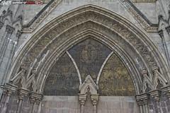 cathedral 8 (punkbirdr) Tags: api audy birds birding d7100 nikkor24mmf28af ecuador punkbirdrphoto quito