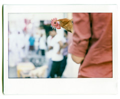 Shot with the GrafINSTAX (Robber34) Tags: graflex instax grafinstax polaroid streetphotography instant film instaxwide fuji fujifilm wide qatar doha vintage camera woodencamera sofortbild 210 project cameraproject fujiinstax fujifilminstax instax210