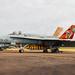 Spanish Air Force EF-18A Hornet