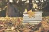 libros (xelea) Tags: 7dwf libros stilllife autumn otoño crazytuesdaytheme
