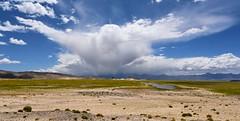 "Immediately I thought there is my ""Garuda"", Tibet 2017 (reurinkjan) Tags: tibetབོད བོད་ལྗོངས། 2017 ༢༠༡༧་ ©janreurink tibetanplateauབོད་མཐོ་སྒང་bötogang tibetautonomousregion tardrongpaའབྲོང་པ་county garudacloud garudaeagle fabulouschiefoffeatheredraceག་རུ་ད་garuda ག་རུ་དཱ ག་རུ་ཌ garudalargemythicalbird amoghasiddhi buddha nagas pictureofcloudsསྤྲིན་རིསtrinri darkcloudསྤྲིན་སྨུག་པོtrinmukpo cloudswhichareabadomenཐན་སྤྲིན་thansprin tibetanlandscapepicture landscapeཡུལ་ལྗོངས།yulljongsyünjong landscapesceneryརི་ཆུ་ཡུལ་ལྗོངསrichuyulljongsrichuyünjong landscapepictureཡུལ་ལྗོངས་རི་མོyulljongsrimoyünjongrimo natureརང་བྱུང་ཁམས་rangbyungrangjung natureofphenomenaཆོས་ཀྱི་དབྱིངས་choskyidbyings earthandwaternaturalenvironmentས་ཆུ་sachu suparṇa drongpatradunསྐྲ་བདུནཏྲ་དུང་"
