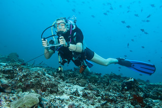 Diver in drift whit hook. Subacquea in corrente col uncino.
