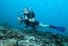 Diver in drift whit hook. Subacquea in corrente col uncino. (omar.flumignan) Tags: reefhook uncino drift corrente diver sub mysachika atollo atoll batalakanthila arinord northari maldive maldives cruise crociera canon g7xmk2 fantaseafg7xmk2 ikelite ds51 intova flickrtravelaward