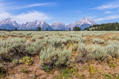 Grand Teton National Park (fabioresti) Tags: grandteton nationalpark usa america travelphotography traveling traveller travelblogger landscape trip view nature photography photo wyoming