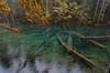 Bodensee  A - Colori d'inizio autunno