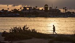 Early Morning Stroll (Fermat 48) Tags: walk sunrise marina sand beach landscape seascape reflection canon eos 7dmarkii minion yacht boat lighthouse palmtree barrier shadow silhouette