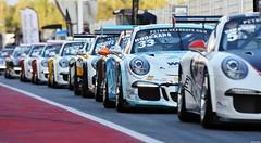 Porsche Carrera Cup France / GT3 Cup Challenge  Benelux (Renzopaso) Tags: porsche carrera cup france gt3 challenge benelux festival velocidad circuit barcelona porschecarreracupfrance porschecarreracup race racing motor motorsport photo picture festivaldelavelocidad circuitdebarcelona gt3cupchallengebenelux gt3cupchallenge