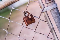 284/365 : Locked
