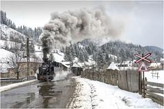 Moldovita Crossing (channel packet) Tags: romania moldovita steam train locomotive railway railroad logging snow weather davidhill