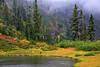 North Cascades Autumn,  I (louelke - back and busy) Tags: autumn autumncolors northcascadesnationalpark fall colorful pond artistpoint fog rain austin pass