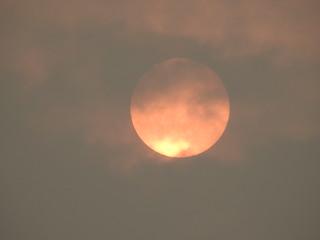 Sahara sun, Oct 17 2017 (3)