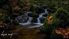 La Serva (️️️️WarCat.) Tags: cascade france nikon longexposure d3300 eau sigma nature water autumn colors couleurs automne europe expositionlongue waterfall