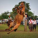 Leno Oliveira thumbnail