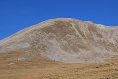 Bastiment 9 (Laura.BDN) Tags: bastiment vallter2000 colldelamarrana pirineos montañas mountains montagnes montis