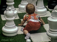 Baby on a Chessboard (Greatest Paka Photography) Tags: child chessboard baby lifesize game giantchess crawl people infant