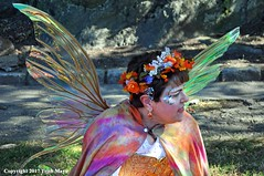 Do You Believe In Magic (Trish Mayo) Tags: wings fairywings costume medievalfestival forttryonpark washingtonheights