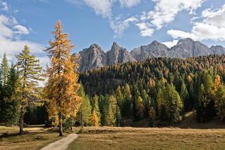 Autumn in Cortina