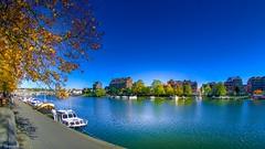 On dirait l'été (YᗩSᗰIᘉᗴ HᗴᘉS +9 500 000 thx❀) Tags: season autumn summer landscape meuse color canon canoneos7dmarkii 8mm paysage water waterscape boat 7dwf