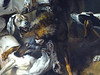 OUDRY Jean-Baptiste,1725 - Hallali du Loup (Condé) - Detail 3 (L'art au présent) Tags: art painter peintre details détail détails detalles frenchpaintings peinturefrançaise frenchpainters peintresfrançais condé chantilly museum france renaissance animal animaux animals dog dogs pet chien combat loups wolf fight attaque halali paintings peintures peinture18e 18thcenturypaintings