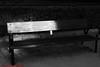 JARDINES SABATINI-Madrid (FRANCISCO DE BORJA SÁNCHEZ OSSORIO) Tags: love light luz life lovely amor arrow autumn otoño spring summer shot verano vida photo pasión passion primavera flechazo focuspoint focus foco detalles detalle detail details desenfoque disparo delicado delicate divertido dof depthoffield bokeh beauty belleza blancoynegro blackandwhite bw exposure exposición enfoque timeexposure tiempodeexposición tripod temperaturadecolor trípode colour color composición composition colourtemperature nature naturaleza nice 35mm 50mm